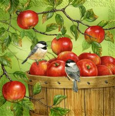 Autumn Harvest Chickadee & Barrel of Apples Fall Lg House Flag Evergreen for sale online Fall Garden Flag, Garden Flags, Watercolor Paintings, Tole Painting, Decoupage, Apple Art, Motifs Animal, House Flags, Bird Pictures