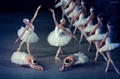 Swan Lake. Went to see this on Sunday, and it was ABSOLUTELY GORGEOUS. I hardly have words for how amazing it was.