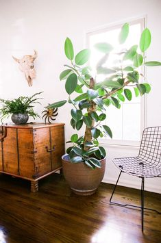 How to get that effortlessly chic California-cool look in your home