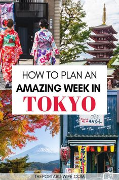 Have 1 week in Tokyo Japan? My Tokyo itinerary 6 days covers the best things to do in Tokyo from restaurants to shrines, as well as secret places in Tokyo. Explore Tokyo at night and day with these Tokyo travel tips, including a map of the city's highlights. In a travel destination this big, you'll want a Tokyo itinerary that covers everything as efficiently as possible, from Akihabara to Shibuya Crossing! #tokyo #japantravel #asiatravel