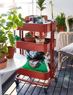 The top shelf of a red utility cart is filled with seedlings planted in pots.