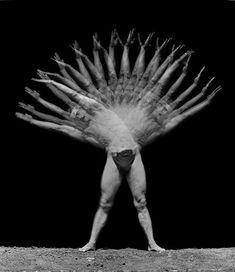 Un exercice dassouplissement du tronc chronophotographie de G. Demenÿ