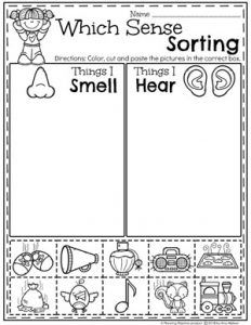 Preschool Sorting Worksheets - The 5 Senses, Smell and Sound Do you teach a 5 Senses theme? Kids will get to learn about and sort the different senses as well as try tasting, listening, feeling and smelling. Five Senses Preschool, 5 Senses Activities, Preschool Learning Activities, Preschool Curriculum, Preschool Lessons, Kindergarten Worksheets, Kindergarten Activities, Kids Learning, Homeschooling