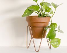 Copper Metal Wire Plant Stand Mid-Century Inspired