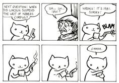 Silly cat! #lol