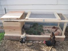 New Quail Coop | Out of Eden