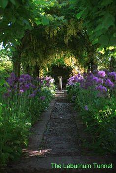 Rosemary Verey's Garden