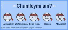 Guía para Aprender Mapudungun. Family Guy, Culture, Comics, Languages, Fictional Characters, Chile, Google, Block Prints, Faeries