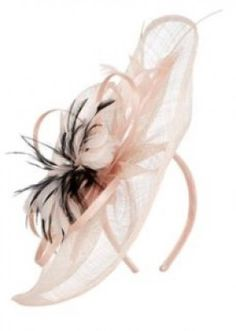 Ladies Special Occasion Fashion & Plus Size Clothing Black Fascinator, Feather Design, Black Feathers, Pink Outfits, Pretty In Pink, Plus Size Outfits, Plus Size Fashion, Special Occasion, Cool Designs