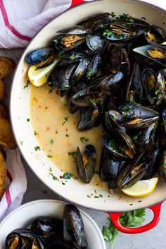 Steamed Mussels with Garlic and Parsley - Little Broken Steamed Mussels with Garlic and Parsley – only 8 ingredients to make the BEST tasting steamed mus Shellfish Recipes, Seafood Recipes, Dinner Recipes, Cooking Recipes, Healthy Recipes, Garlic Mussels, Steamed Mussels, Baked Mussels, Mussels Marinara