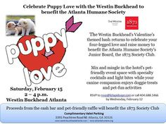 Come join the fun and help raise money for the shelter animals!!!!