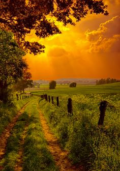 =>I adore this finest nature landscape photography. Beautiful Sunset, Beautiful Places, Beautiful Pictures, Stunningly Beautiful, Beautiful Scenery, Beautiful World, Cenas Do Interior, Country Life, Country Roads