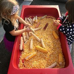 Some examples of sensory play. Fall Sensory Bin, Toddler Sensory Bins, Sensory Activities Toddlers, Sensory Boxes, Autumn Activities For Kids, Fall Preschool, Sensory Table, Preschool At Home, Motor Activities