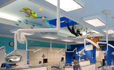 Pediatric and Ortho Dental Office Theming in Photos   Imagination Dental Solutions