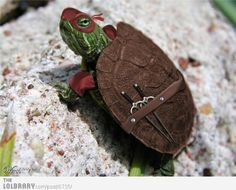 Baby Normal Ninja Turtle