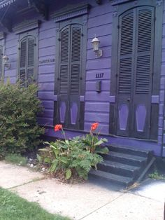 Image detail for -shotgun house # new orleans # colorful # shutters