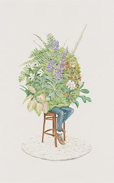 Illustrations by Carmel Seymour