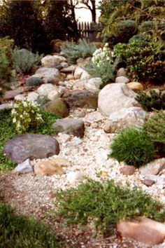 You don't miss your water till your river runs dry~ #awesome #garden