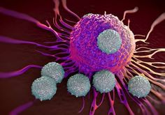 What is immunotherapy and how does it work against cancer? Click through to learn more about how doctors are now able to use the body's own immune system to attack diseases like cancer. Personalized Medicine, T Cell, 257, Types Of Cancers, Cancer Types, Blood Cells, Cancer Treatment, Side Effects, Cellulite
