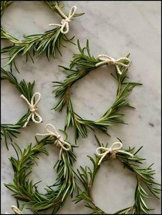 rosemary wreaths great for napkin rings or place cards or as favors that smelly wonderful
