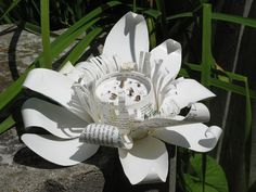Starbucks lotus at the garden Lotus Sculpture, Recycled Art, Starbucks Coffee, Some Fun, Coffee Cups, Recycling, Creative, Garden, Painting
