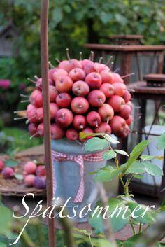 Petites pomes clavades en una bola de porex