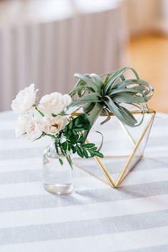 Bud Vases, Air Plants, and Modern Geometric Table Decor | Alisha Maria Photography | http://heyweddinglady.com/modern-indoor-garden-wedding-elegant-ballroom/