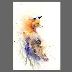 JEN BUCKLEY Original red FOX  Watercolour PAINTING signed large A3