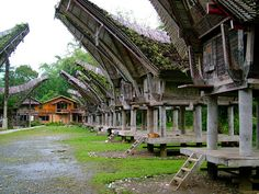 Las curiosas casas de la etnia Tana Toraja en Sulawesi, Indonesia