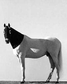 Steven Klein, Horse with Black Hood, 1995