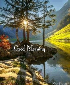 Good Morning Nature Images, Good Morning Friends Images, Good Morning Beautiful Pictures, Good Morning Flowers Gif, Good Morning Image Quotes, Good Morning Inspiration, Good Morning Picture, Good Morning Good Night, Morning Pictures