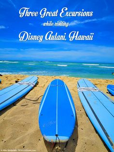 Three Top Excursions from Disney Aulani: Surf, Snorkel and take in a Luau! http://1923mainstreet.com/blog/disney-aulani-surfing-snorkeling-luau/ #disney #aulani #hawaii