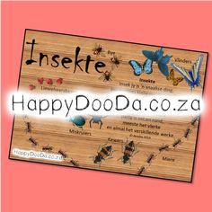 'n Tema muurkaart – Insekte. Hierdie produk is in Afrikaans vir leerders 4-13 jaar.