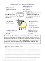 Modelos didácticos para primaria: DESCRIPCIÓN DE ANIMALES Y OBJETOS. Spanish Classroom, Teaching Spanish, Teaching Science, Teaching Tips, Story Cubes, Abc Activities, Spanish Lessons, Classroom Organization, Lesson Plans