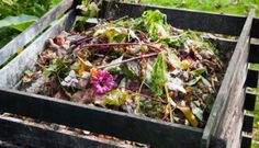 10 Composting Tips for Beginners