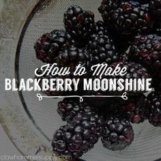 Infusing is a great way to add amazing flavor to moonshine and it is also a very simple and rewarding process. Berry season is upon us and blackberry infused mo