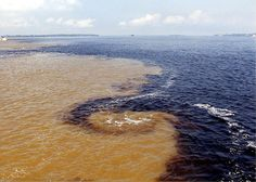 Fabulous picture of the mixing of the waters. Encontro das aguas do Rio Negro e rio Solimões Manaus, Brazil Great Places, Places To See, Beautiful Places, Amazing Places, Manaus Brazil, Manaus Am, Brasil Travel, Amazon River, Amazon Rainforest