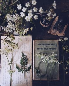 Beautiful witch aesthetic, love the herbs, flowers, and books. Spring Aesthetic, Plant Aesthetic, Witch Aesthetic, Book Aesthetic, Aesthetic Pictures, Aesthetic Grunge, Wicca, The Ancient Magus Bride, Deco Floral
