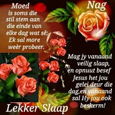 Good Night Wishes, Day Wishes, Happy Birthday Elvis, Evening Greetings, Goeie Nag, Afrikaans Quotes, Good Morning Texts, Sleep Tight, Morning Greeting