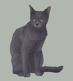 Stormtail, Bluestar's father. I don't think this guy deserved all the hate he got. He was only looking out for his daughters.   *waits for Sunstar fans to tell me how wrong I am*