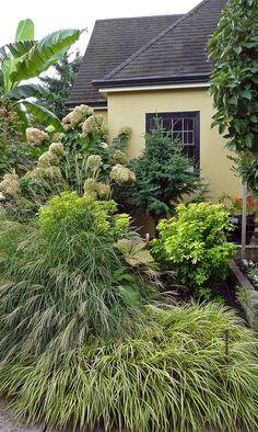 Green on Green Garden Tour Portland Oregon | Grasses in the Fall Garden