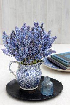 Tiny Blooms-# 41-Pale Blue Grape Hyacinths-Ingrid Henningsson-Of Spring and Summer