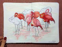 How many flamingos do you see?))) Наконец-то А5 ⁉️Вопрос - а сколько фламинго видишь ты? #iamхудожник #маркеры #копик #скетч#скетчбук…