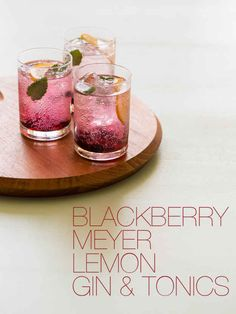 Blackberry Lemon Gin and Tonic.