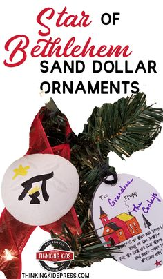 Make these easy Christmas Star of Bethlehem Sand Dollar ornaments to remind your kids about the Nativity. Make extra ornaments to gift! Christmas Bible, Christmas Ornaments To Make, Christmas Star, Simple Christmas, Christmas Crafts, Xmas, Homeschool Curriculum, Homeschool Kindergarten, Homeschooling