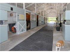 Stable barn lovely light blue colour and white keeps the stable complex light and bright. #stables