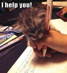 When my cat was little he did this when I was doing homework and then would lay on my work :) <3