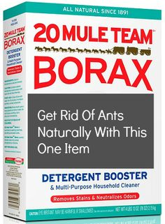 How to Get Rid Of Ants Naturally  1/2 cup of borax and sugar.  Sprinkle where you see ants.