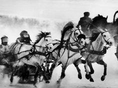 Troika Race at Hippodrome  by Stan Wayman Item #: 3597863