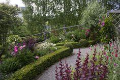 Helens's Cottage Garden